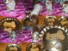 postre: Tarta de cumplea�os para perros